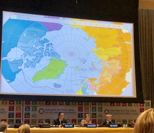 Arctic Council sells itself as a model for international cooperation at the UN