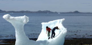 How gene mapping could mean better health care for Arctic residents