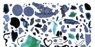 Arctic Council eyes action plan to reduce Arctic marine litter, microplastics