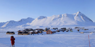Svalbard study finds high levels of pharmaceuticals in marine life