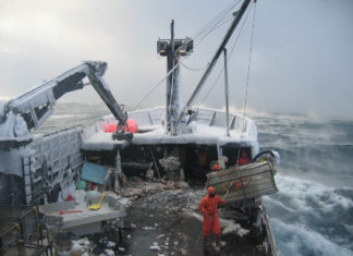 Fishery managers approve an ecosystem plan for the fast-changing Bering Sea