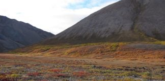 The Biden administration is reconsidering a controversial mining access road in Alaska's Arctic