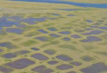 How permafrost insurance could revolutionize Arctic development