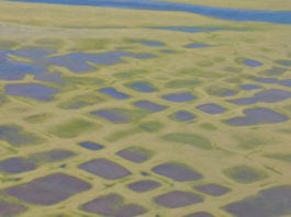 How permafrost insurance could revolutionize Arctic development