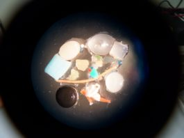 Microplastics in Arctic sea ice should concern everybody