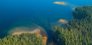 BP, seeking to reduce carbon footprint, makes forest-preservation deals with Alaska Native corporations