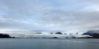 The Arctic Ocean urgently needs environmental protections, says WWF Arctic head