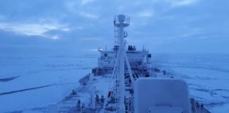 A new Arctic Council database to offer clues about shipping yet to be