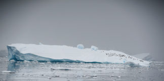 'Artificial snow' could save stricken Antarctic ice sheet, a new study says