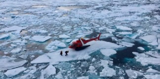 A passing icebreaker rescues lost beluga recordings from Arctic sea ice