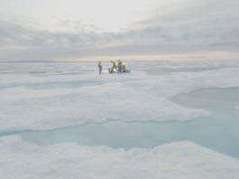 'Punch in the gut' as scientists find micro plastic in Arctic ice