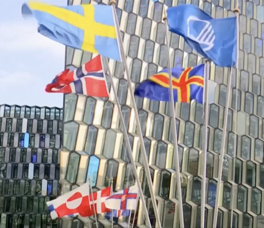 Nordic region to become most sustainable in the world: Nordic PMs