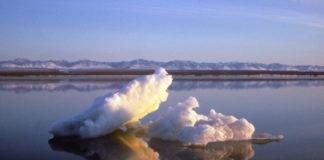 US regulators choose expansive plan for Arctic Refuge oil leasing, offering entire coast for auction