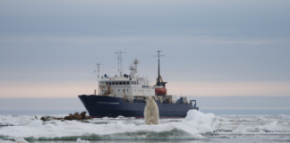 Russian scientists found microplastics along the entire Northern Sea Route