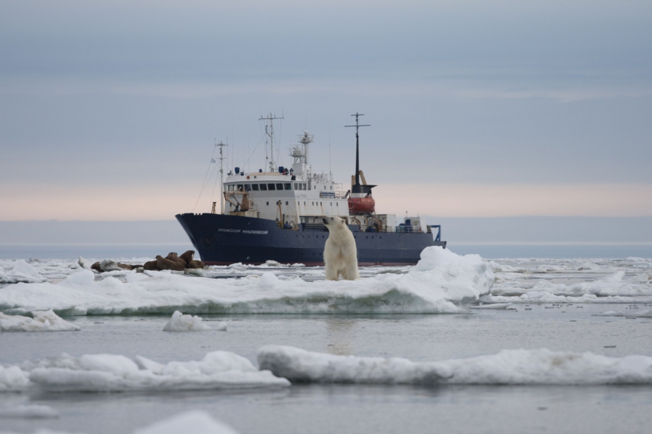 Russian scientists found microplastics along the entire Northern Sea Route - Arctic Today