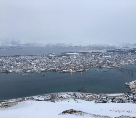 Why cross-border cooperation is a key to the sustainable development of Arctic cities and towns