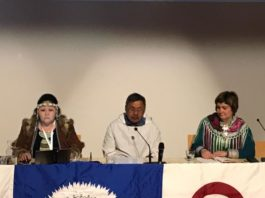 Arctic Indigenous leaders call for more action on climate change