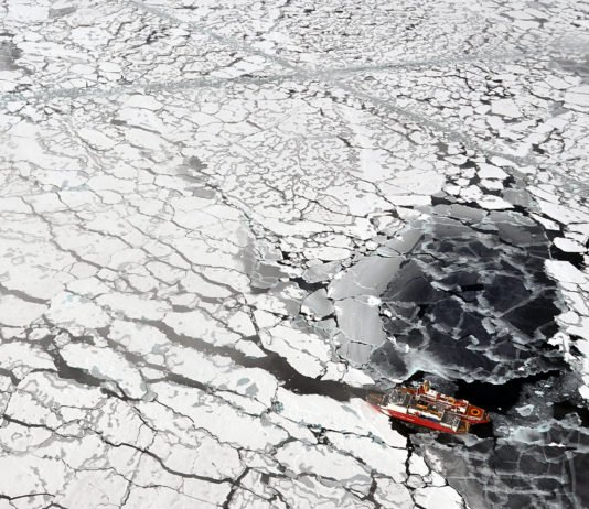 The past six years have all been the hottest on record in the Arctic