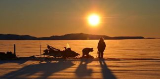 An Inuit exemption to the European Union's seal product ban is ineffective, a new report says