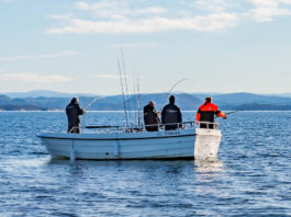 Registered guides, whole fish, latest weapons in Norway's efforts to keep foreign anglers honest
