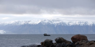 Arctic fisheries brace for 'significant' effects from China's coronavirus lockdown