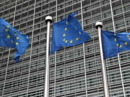 European Commission holds meeting to discuss Inuit exception to seal product ban