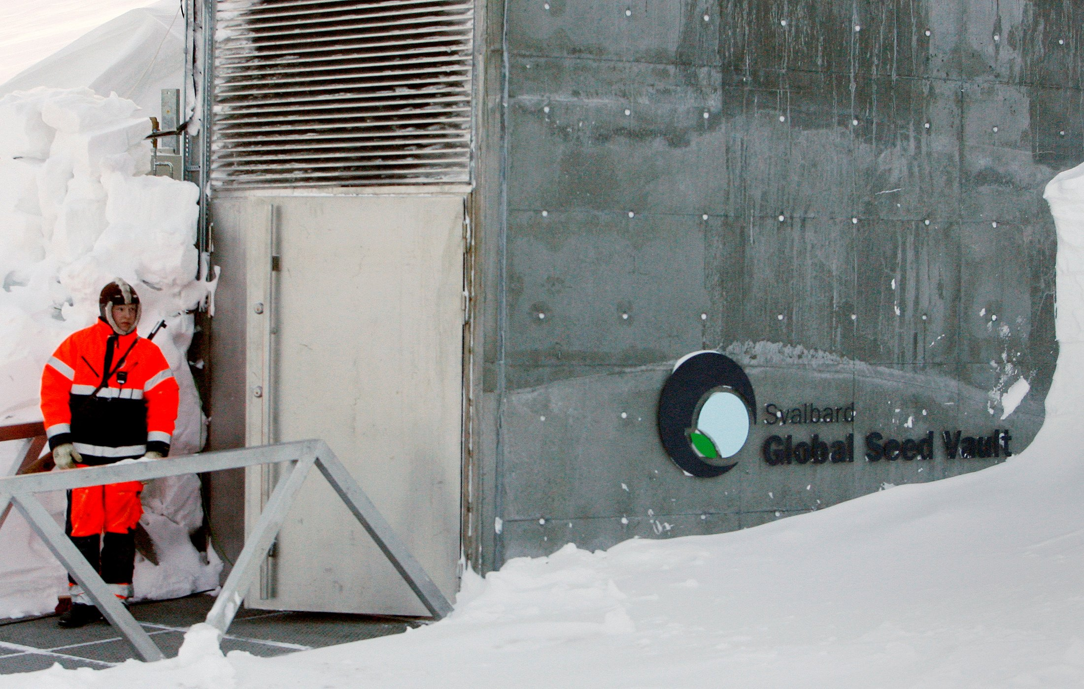 Svalbard S Doomsday Vault Is Set To Welcome Its 1 Millionth Crop