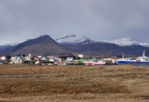 Iceland halts its commercial lobster harvest