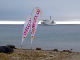 Nunavut artists will take a hit from this year's Arctic cruise ban