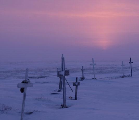 What the Arctic reveals about coronavirus