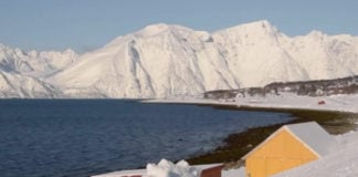 Arctic tourism businesses fear they won't survive the coronavirus crisis