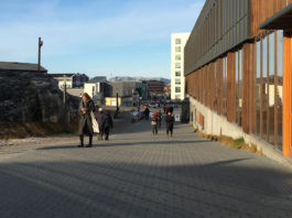Greenland temporarily bans alcohol sales in some communities during coronavirus lockdown