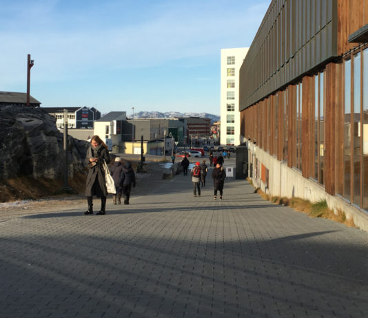 Greenland's 'power elite' is diverse, but geographically concentrated, study suggests