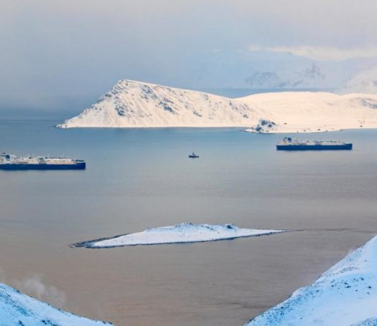 COVID-19 pandemic drove Novatek to bring LNG transfers back to Norway