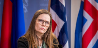 Iceland might consider taking stake in Icelandair if the state injects funds, says prime minister