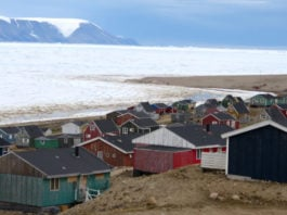 The COVID-19 pandemic has halted most US Arctic field research for 2020