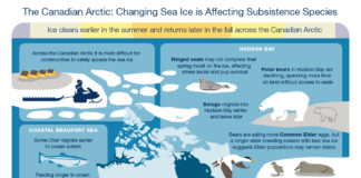 A new report shows sea ice in Canada's Arctic waters is changing