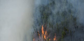 Alaska will see a big increase in health-damaging air pollution from wildfires, study says