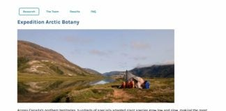 A Canadian museum is looking for volunteers to help build an online Arctic botany database