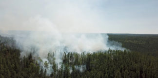 Russia seeds clouds in Siberia to douse raging wildfires