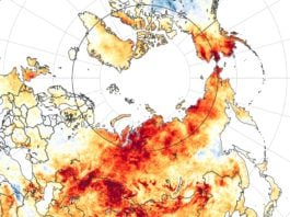 100 degrees in Siberia? 5 ways the extreme Arctic heat wave follows a disturbing pattern