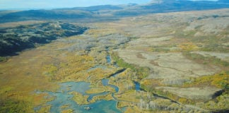 Alaska's Pebble Mine told to offset damage as Republican opposition grows