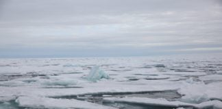 Arctic ice extent is unlikely to hit a record-low minimum, but lingering ice is 'thin and porous'