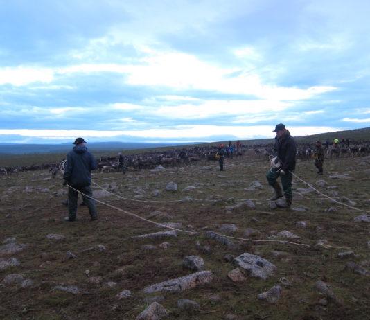 UN criticizes Sweden for failing to consult Sámi on mining permit