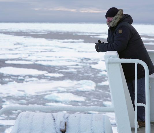 Inspired by Thunberg, a veteran climate activist returns to the Arctic