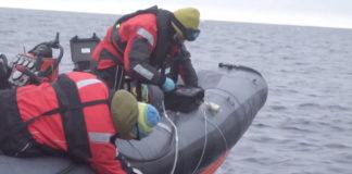 Meet the scientist sampling the Arctic's environmental DNA