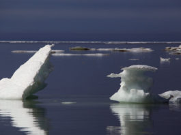 Why winter sea ice re-growth in the Arctic has stalled — and what it means for the rest of the world