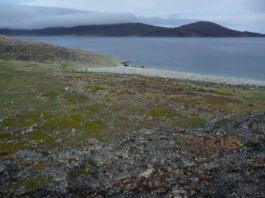 Canada announces plans to create new conservation area in Nunavik
