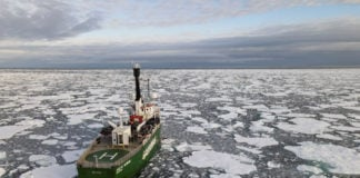 A cool summer sees Arctic sea ice reach its 12th-lowest minimum extent on record