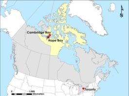Ottawa rejects the sale of Canada's TMAC Resources to China's Shandong Gold